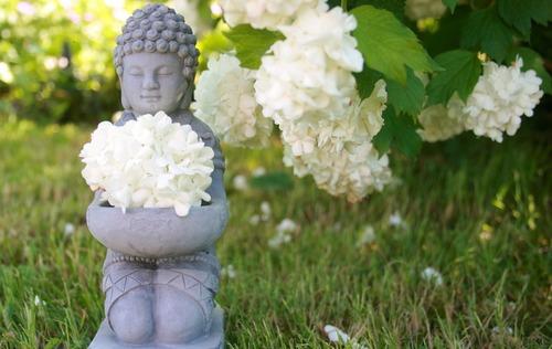 buddha-753016_1280.jpg