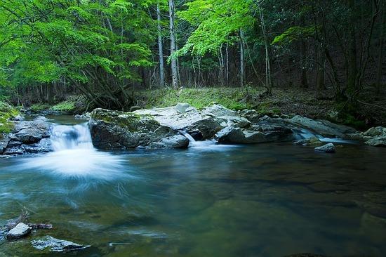 river-1167456_640.jpg
