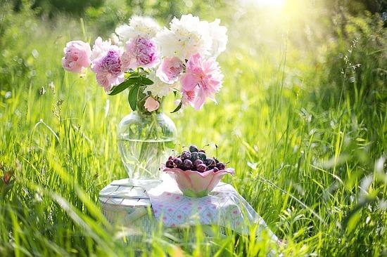 cherries-1450154_640.jpg